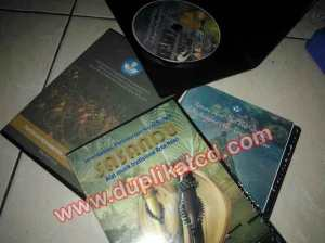 copy cd dokumentasi budaya